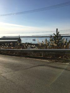 サンファン館隣から見る渡波ロング堤防